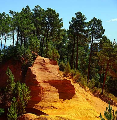 Ochre rocks in the coastal pine forest of the Côte d'Azur